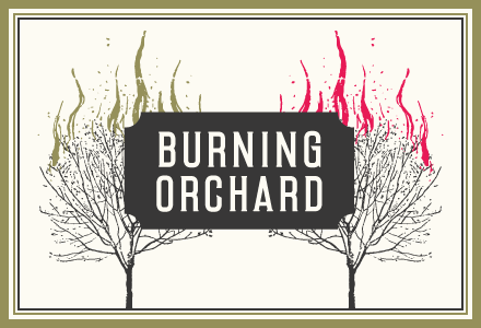 Burning Orchard